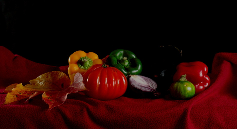 Nature Morte Top-15.jpg